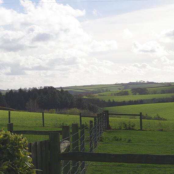 Cover North Devon countryside, including Barnstaple and Bideford