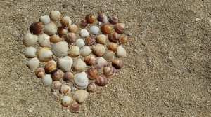 Seashells on the beach in shape of heart